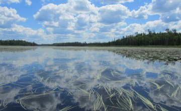Boundary Waters Canoeing - From the Lake