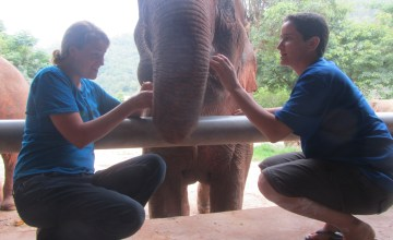 Saying Goodbye to Dani at Elephant Nature Park