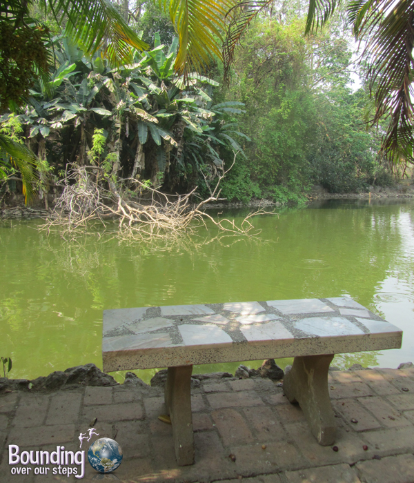 Quiet bench at Wat Umong in Chiang Mai, Thailand