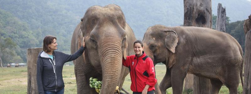 Birthday at Elephant Nature Park