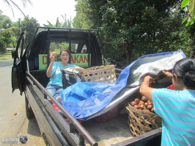 Singaraja to Ubud in a Fruit Truck