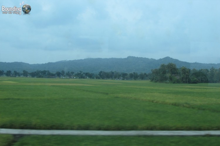 Train Across Java - Scenery