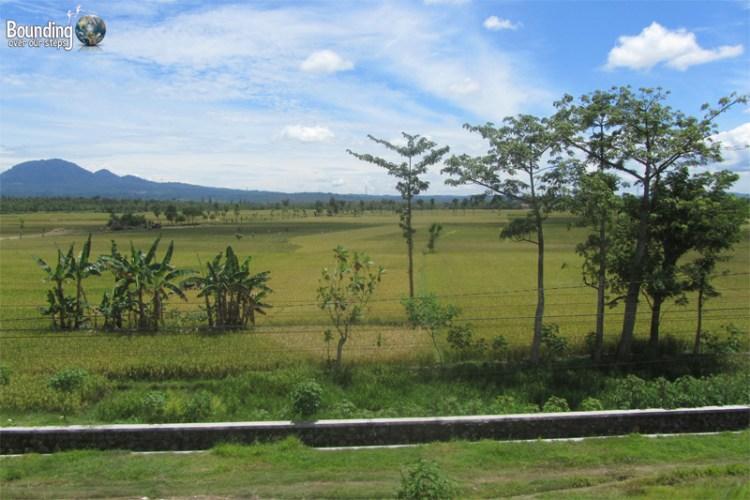 Train Across Java - Scenery