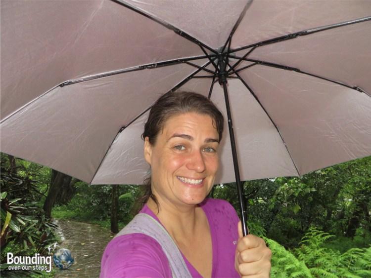 Elephant Mountain - Hiking in Typhoon - Ligeia Under Umbrella