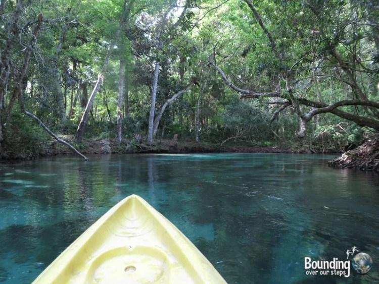 Kayaking Weeki Wachee - Blue Water