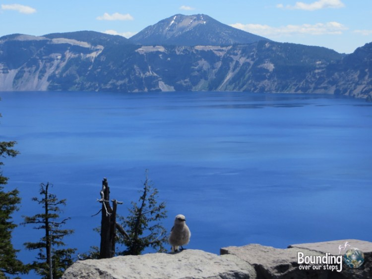 Pic 2 - Crater Lake - Discovery Point