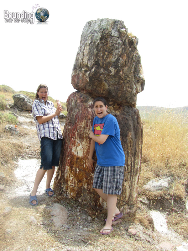 Absolutely petrified in the Petrified Forest of Lesbos, Greece