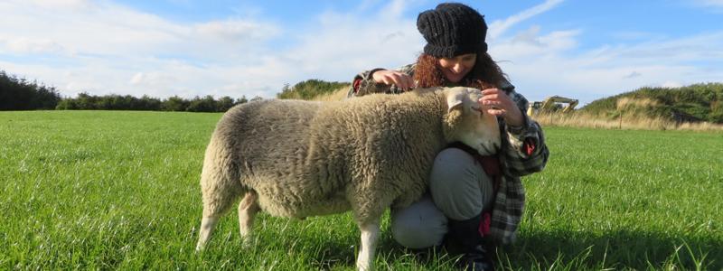 Vegan in Ireland