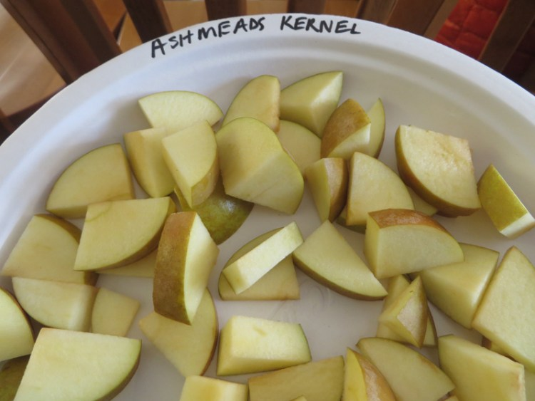 Apple Tasting in Vermont - Ashmeads Kernel