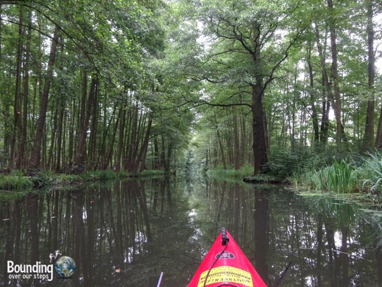 Things to do in Berlin - Spreewald - Kayaking