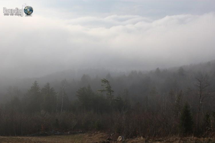 Grammie in Maine - Vegan - Maine Landscape