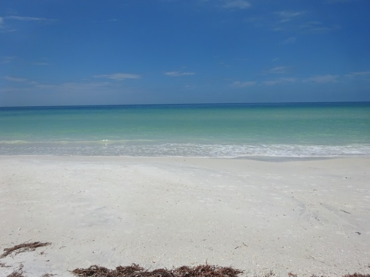 Lesbian Things to Do in Dunedin, Florida - Honeymoon Island