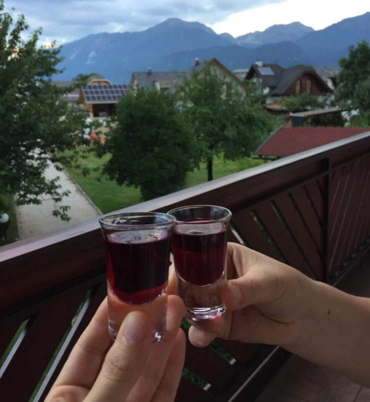 Vegan in Slovenia - Cheers!