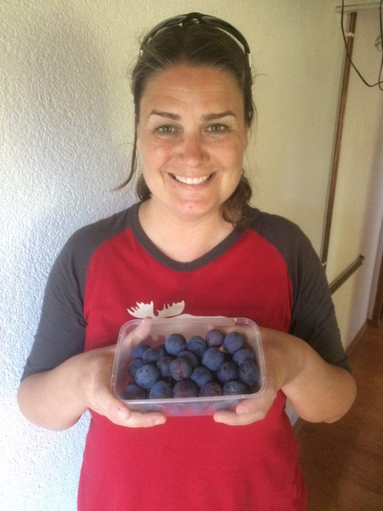Vegan in Croatia - Ligeia with Fresh Plums
