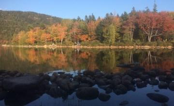 Jordan Pond Acadia National Park - Foliage on Jordan Pond