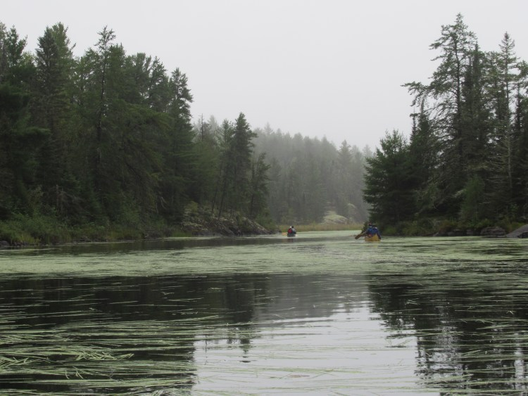 Calmness and serenity paddling in the Boundary Waters Canoe Area (BWCA)