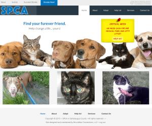 SPCA in Cattaraugus County