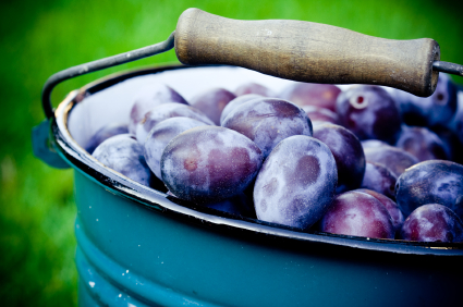 plums, fruit, yoga, healthy diet, whole foods plant based, vegan