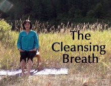 Pranayama Practice:  The Cleansing Breath
