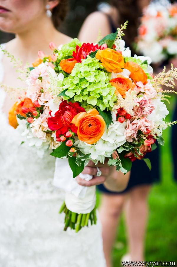 Bride's bouquet- orange ranunucla, dahlia and hypericum berries with stock and hydrangeas.