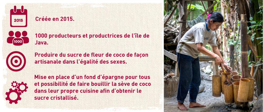 producteurs sucre fleur de coco bio commerce equitable
