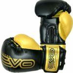 Evo Maya Cuir Gants de Boxe MMA Sac De Frappe Entraînement Kick Boxing entraînement Gant – 14 Oz