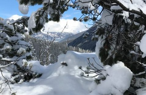 Taking a walk in the white world of the Dolomites