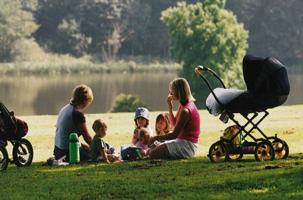 Best Places To Picnic In Wiltshire