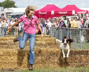 Living Heritage Wiltshire Game & Country Fair