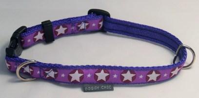 DCHIC-Purple-Star-Dog-Collar- for your dog