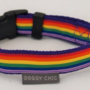 Rainbow Pride Dog Collar for your dog