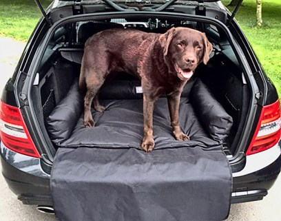 boot bed for your dog