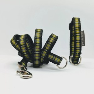 cornish tartan for your small dog and puppy