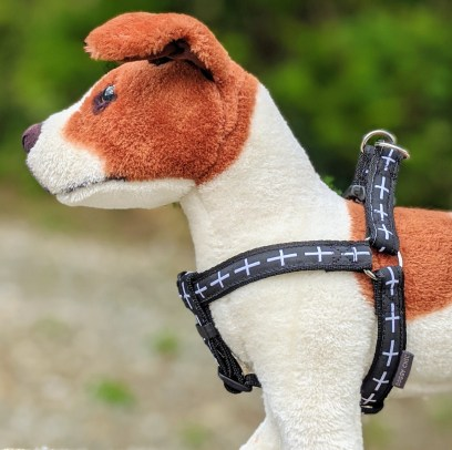 cornish dog harness