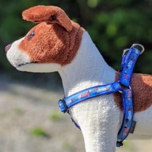 dachshund dog harness