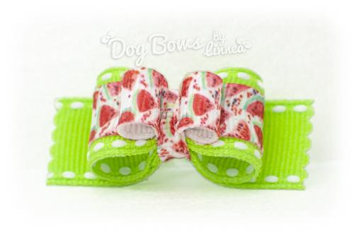 Fizzy Dizzy Watermelon ~ Plush Tie