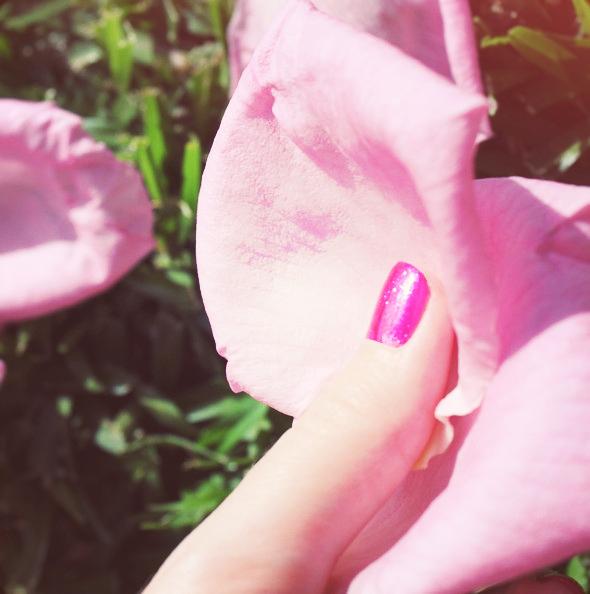 rose paillettes