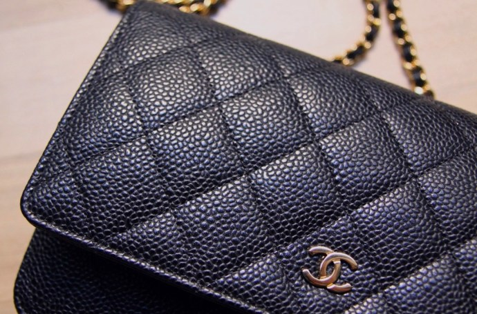 sac chanel WOC Wallet on Chain bag