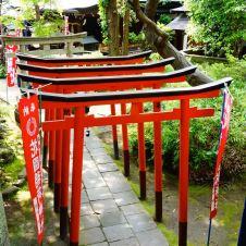 tokyo_tori_garden