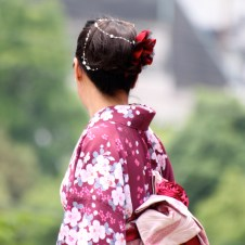 yukata_japanese_girl_japonaise_rose_pink_beautiful_hairdo_obi_sakura