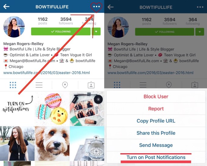 Bowtiful Life Turn on Post Notifications Instagtam