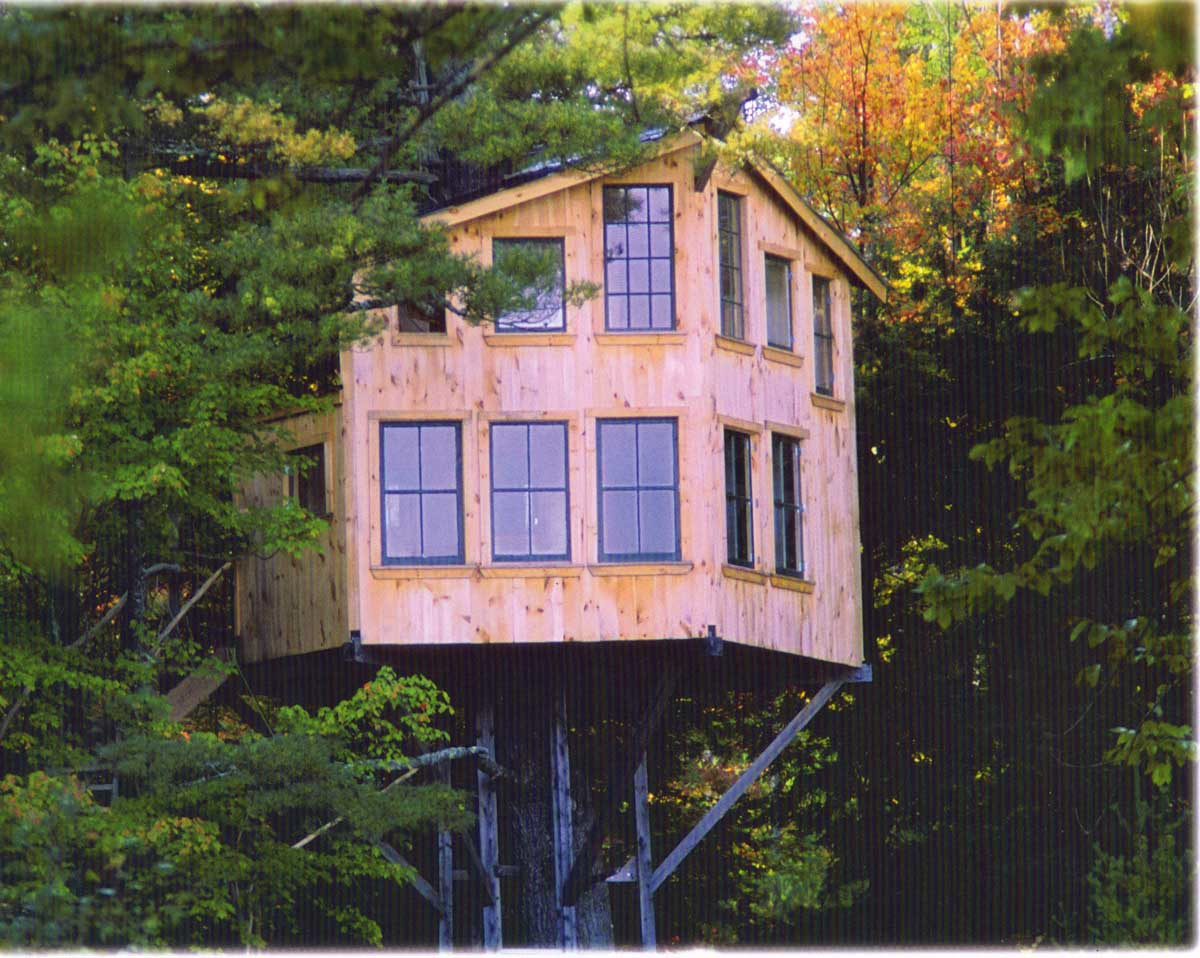 Tree house up close