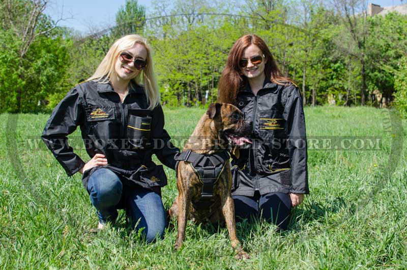 Any Weather Boxer Harness With Comfortable Chest Plate