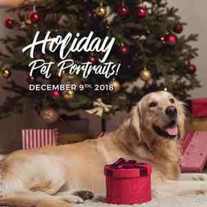 Bark & Fitz Pet Portraits @ Bark & Fitz | Oakville | Ontario | Canada
