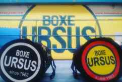 boxe-ursus-f4