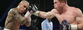 1-cotto-canelo-results (10)