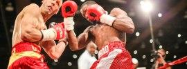 Boxing-Harrison-McKart