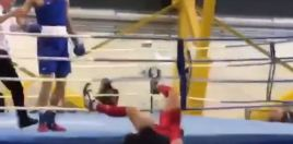 Insane Knockout
