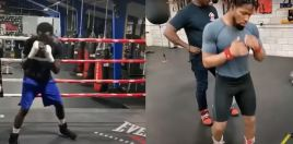 Crawford Porter Training Split View Side By Side