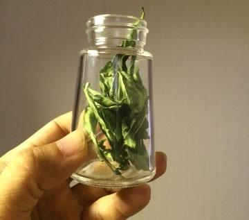 野菜栽培キット05